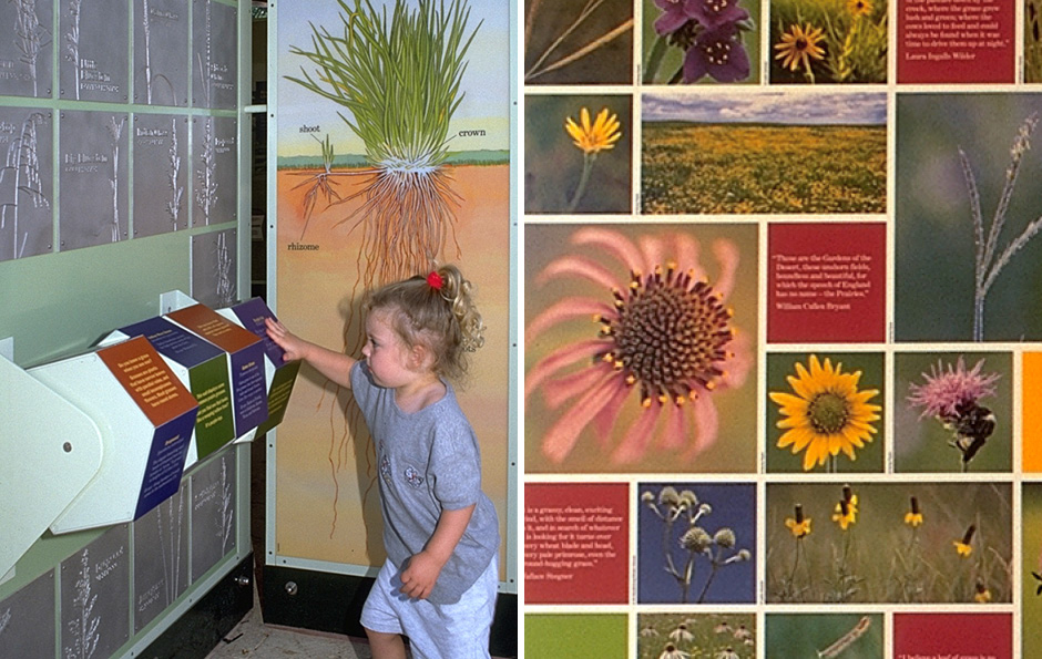 exhibit design, zoo exhibit design, zoo design, interactive, Main Street Design, National Zoological Park