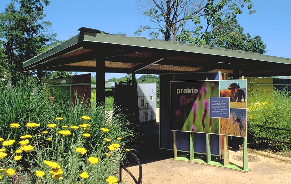 exhibit design, zoo exhibit design, zoo design, interactive, Main Street Design, National Zoological Park