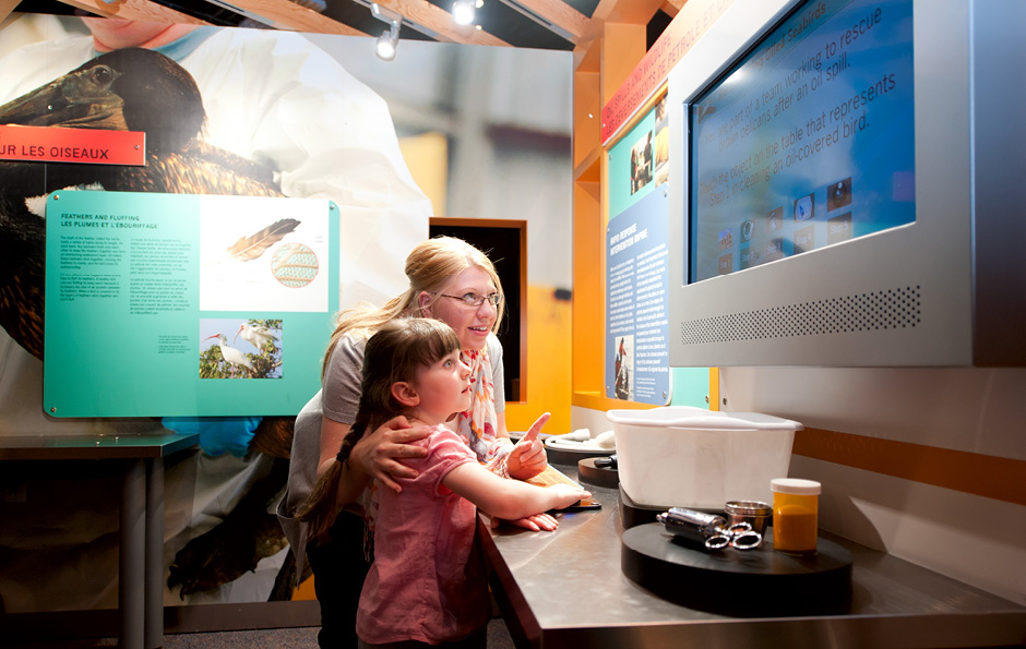 traveling exhibit, interactive, exhibit design, environmental graphics, themed environment, main street design, Science North